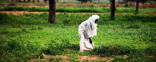 A farmer in South Darfur (RD)