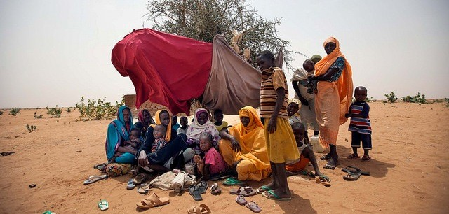 Group of newly displaced, some of them in bad health conditions, under a bush in Zamzam camp (UN)