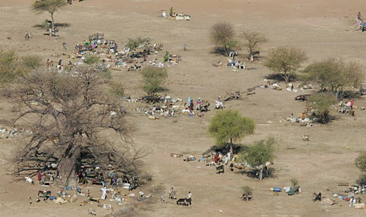 People camping in the open, after fleeing an attack on their village in North Darfur (file photo)
