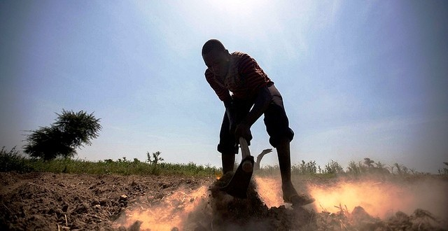 A farmer tending his land in Foro Baranga, West Darfur (Albert González Farran/Unamid)