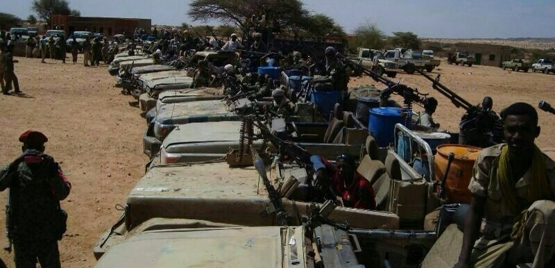 Paramilitary forces with the vehicles they claimed to have captured from armed rebel forces in East Jebel Marra in January 2015. The RSF are under the command of the National Intelligence and Security Services (NISS) (SAF)