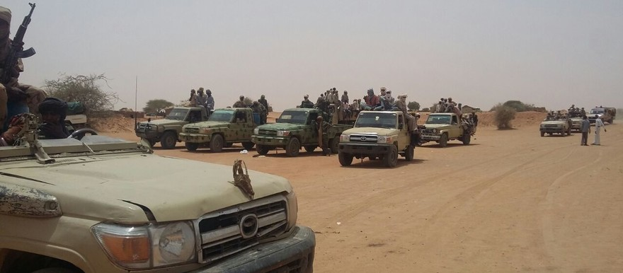 Rapid Support Forces near Nyala, capital of South Darfur, January 2015 (file photo)