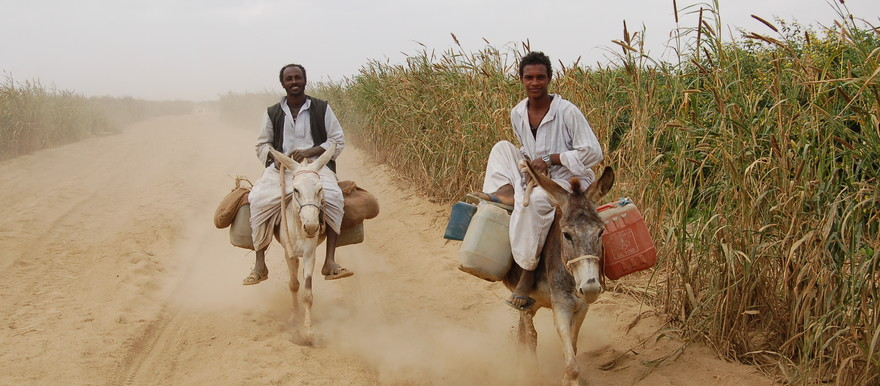 Farmers in the Toker delta, Red Sea state (UNEP)