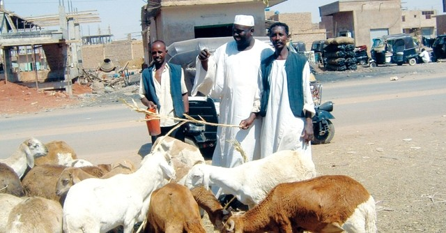 File photo: Herders in Darfur