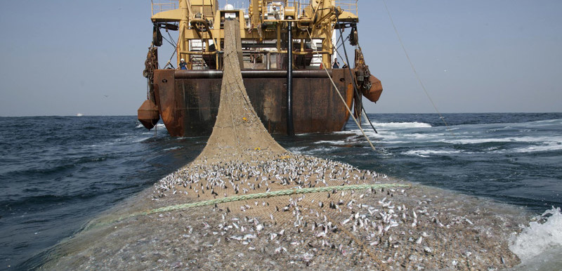 A Dutch super trawler fishing 30 miles off the coast of Mauritania (Pierre Gleizes/Greenpeace)
