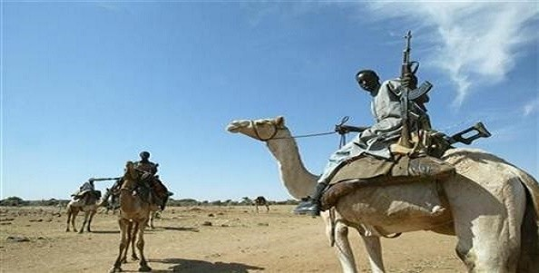 Gunman in Darfur (file photo)