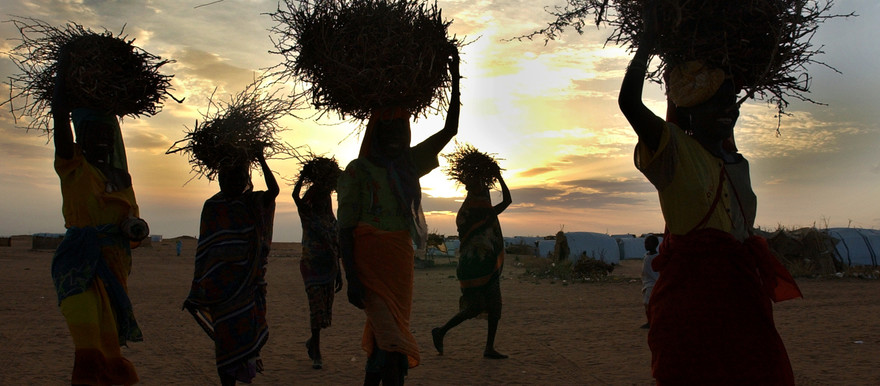 Darfuri women return home with straw and firewood (enoughproject.org)