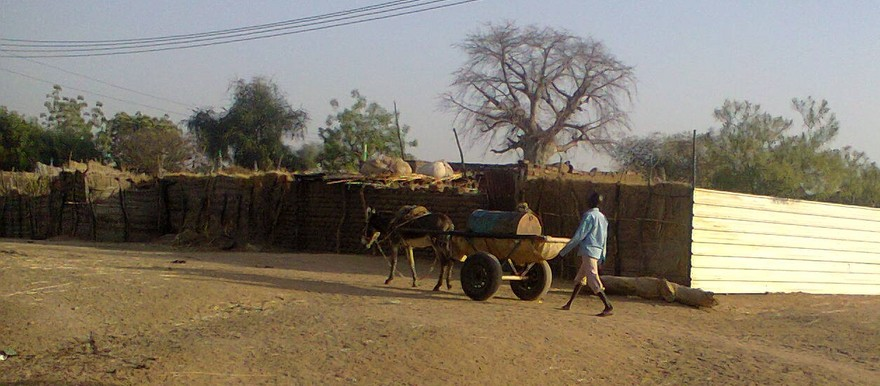 A donkey cart in Roseires, Blue Nile State (RD correspondent)