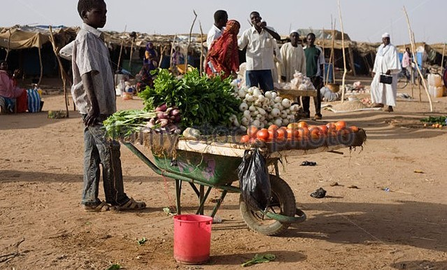 A boy sells fruit from a wheelbarrow in Abu Shouk camp for the displaced near El Fasher, capital of North Darfur (alamy.com)