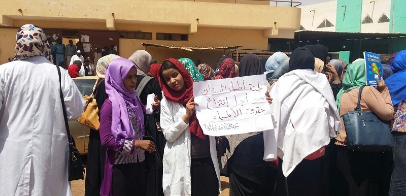 Protests were staged by doctors and medical workers in November throughout Sudan (RD)