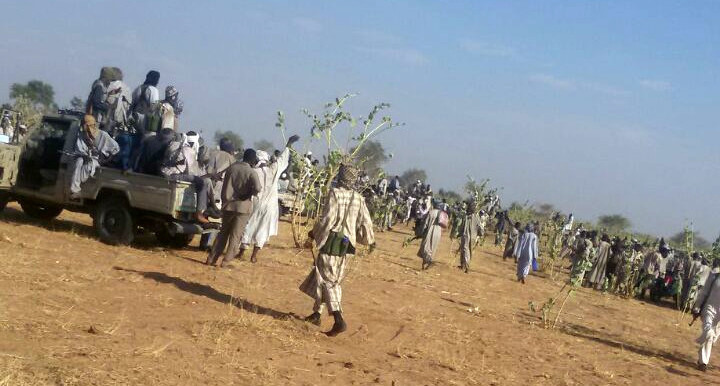 Fire photo: Militant Rizeigat tribesmen during the clashes with Ma'aliya in Abu Karinka, East Darfur, on 11 May 2015 (RD)