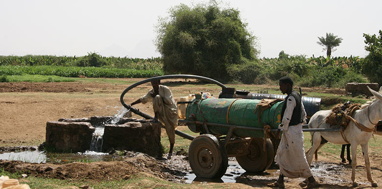 Farmers in Kassala, eastern Sudan (Mohamed Alfatih Hassan Osman/World Bank)