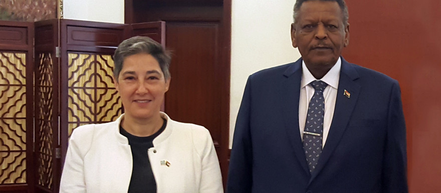 The UN Resident and Humanitarian Coordinator in Sudan, Marta Ruedas with the First Vice President and Prime Minister of Sudan, Lt. Gen. Bakri Hassan Saleh (UN Photo)