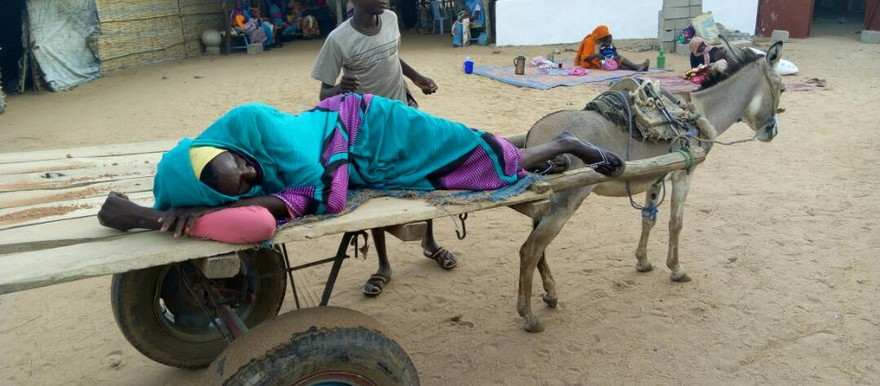 A cholera patient arrives by donkey cart at the isolation cantre in Kalma Camp near Nyala in South Darfur last week (RD)