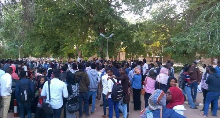 Students of the Un. of Khartoum gather to protest the price hikes, January 7, 2017 (RD)