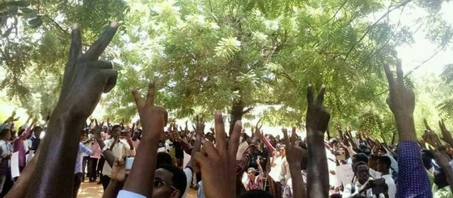 Students at the University of Sennar express their solidarity with the Darfur students of Bakht El Rida, July 2017 (RD)