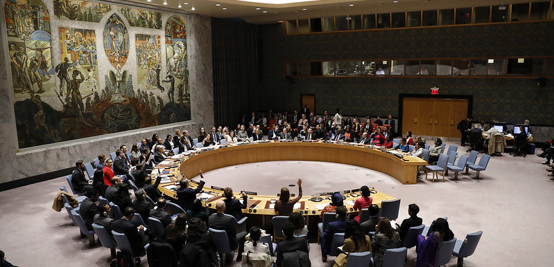 The United Nations Security Council (UN)