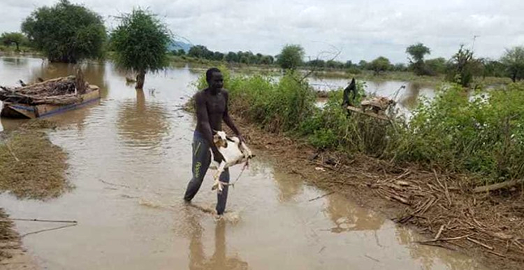 Floods in Darfur this rainy season (Social media)
