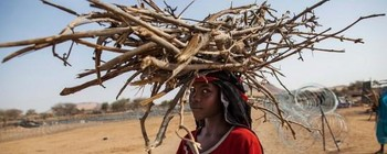 A Darfur woman with firewood (File photo)