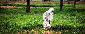 A farmer in Darfur (file photo)