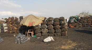 A charcoal market in Omdurman (File photo)