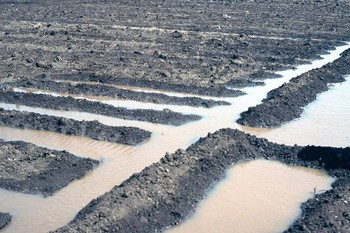 Farmland in El Gezira state freshly irrigated (greatmirror.com)
