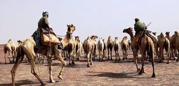 Camel herders in Darfur (File photo)