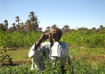 A farmer in Dongola, Northern Sudan, talking on his mobile telephone (file photo)