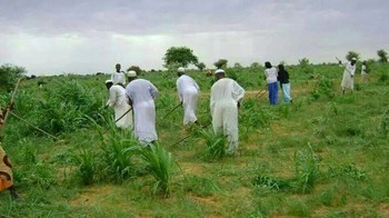 Farmers in Bahr El Arab locality, East Darfur (file photo)