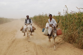 Farmers in eastern Sudan (UNEP)
