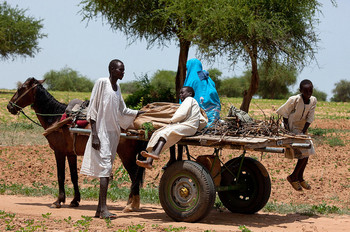 A family returns home after farming the land outside Gireida, South Darfur, during the rainy season (File photo: Albert González Farran)
