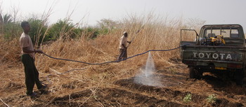 Farmers spray pesticides in El Gedaref state (File photo: Unep)