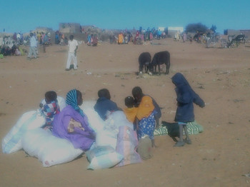 People who fled their villages in northern Jebel Marra arrive at Rwanda camp in Tawila locality, North Darfur (22 January 2016, RD correspondent)