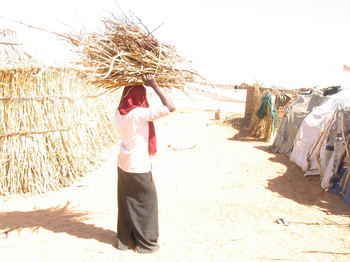 A young woman with firewood in a Darfur camp for the displaced (Genocide Intervention Network)