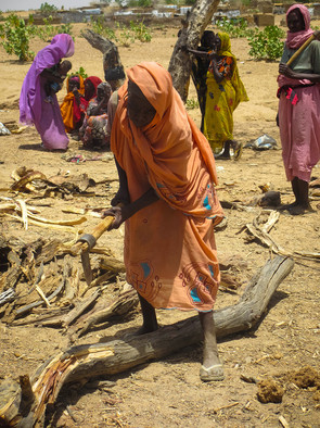 Women chopping wood at a firewood distribution location in Farchana refugee camp, eastern Chad (Refugees International)