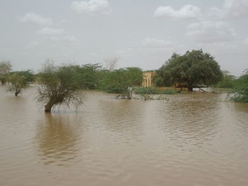 File photo: Flooding of El Gash river in Kassala State, eastern Sudan in July 2016