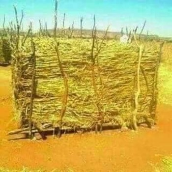 Traditional crops storage (Social media)