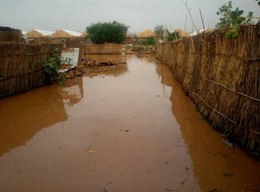 Flooded street in El Fasher, capital of North Darfur, July 28, 2018 (RD)