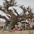 Newly displaced people gather under a tree in Darfur (file photo: worldvision.com.au)
