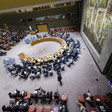 The UN Security Council (UN)