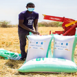 Sudanese farmers working to harvest more than 200 tons of wheat in White Nile state, with machinery provided by Sweden and he Netherlands (UNDP)