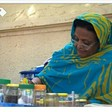 Ihsan Fagiri, head of the No to Women Oppression Initiative working as a tea vendor (Social media)